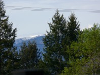 My new view while dong my bookkeeping ... The Rocy Mountains from Radium Hot Springs, B.C.